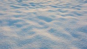 Κλείστε επάνω του φρέσκου χιονιού στον τομέα Στοκ Φωτογραφία