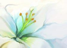 Κλείστε επάνω το άσπρο λουλούδι κρίνων Ελαιογραφία λουλουδιών Στοκ Φωτογραφίες