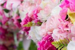 Κλείστε επάνω το ζωηρόχρωμο λουλούδι Στοκ Εικόνες