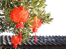 Κλείστε επάνω το κινεζικό φανάρι στο δέντρο πέρα από τη στέγη Στοκ Φωτογραφίες