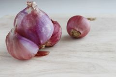 Κλείστε επάνω το κρεμμύδι που τίθεται στην ξύλινη σύσταση Στοκ Εικόνα