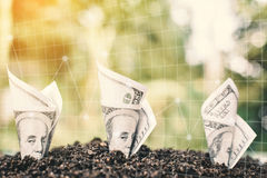 Κλείστε επάνω το λογαριασμό δολαρίων με το οικονομικό διάγραμμα στο χώμα Στοκ Εικόνες