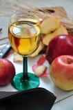 Κλείστε επάνω το ποτήρι του κόκκινου χυμού της Apple Στοκ φωτογραφία με δικαίωμα ελεύθερης χρήσης
