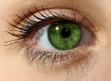 Κλείστε επάνω το πράσινο μάτι με το makeup Στοκ εικόνα με δικαίωμα ελεύθερης χρήσης