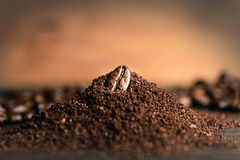 Κλείστε επάνω το φασόλι καφέ στο άλεσμα καφέ στοκ εικόνες