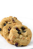 Άσπρα μπισκότα σοκολάτας και των βακκίνιων Στοκ Εικόνες
