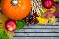 Κλείστε επάνω των πορτοκαλιών φύλλων κολοκύθας, της Apple, σίτου και φθινοπώρου Στοκ Εικόνες