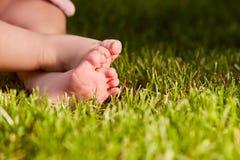 Κλείστε επάνω των ποδιών μωρών ` s στην πράσινη χλόη στο λιβάδι στη θερμή ημέρα Στοκ φωτογραφία με δικαίωμα ελεύθερης χρήσης