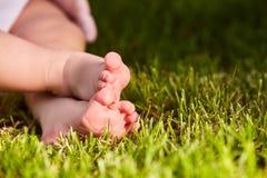Κλείστε επάνω των ποδιών μωρών ` s στην πράσινη χλόη στο λιβάδι στη θερμή ημέρα Στοκ Φωτογραφία