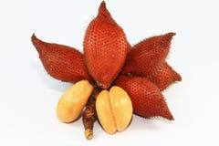 Κλείστε επάνω των φρούτων Salacca στο άσπρο υπόβαθρο Στοκ Φωτογραφία