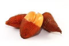 Κλείστε επάνω των φρούτων Salacca στο άσπρο υπόβαθρο Στοκ Εικόνες