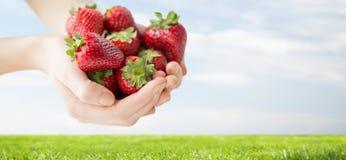 Κλείστε επάνω των χεριών γυναικών κρατώντας τις φράουλες στοκ φωτογραφία με δικαίωμα ελεύθερης χρήσης