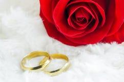 Κλείστε επάνω των χρυσών δαχτυλιδιών ζευγών με το κόκκινο ροδαλό λουλούδι Στοκ φωτογραφίες με δικαίωμα ελεύθερης χρήσης