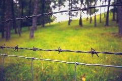 Κλείστε επάνω barb στο καλώδιο με τα δέντρα στο υπόβαθρο Στοκ φωτογραφία με δικαίωμα ελεύθερης χρήσης