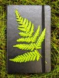 Κλειστό μαύρο σημειωματάριο με ένα πράσινο φύλλο φτερών συνημμένο Στοκ Φωτογραφία