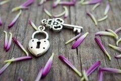 Κλειδί με διαμορφωμένη την καρδιά κλειδαριά Στοκ Εικόνες