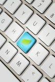 Κλειδί με το πράσινο φύλλο Στοκ Εικόνες