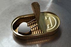 Κλειδαριά με μορφή μιας καρδιάς σε έναν κασσίτερο στοκ εικόνα με δικαίωμα ελεύθερης χρήσης