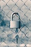 Κλειδαριά λουκέτων στις πύλες πλέγματος Στοκ Εικόνες