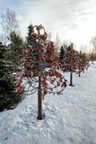 Κλειδαριές αγάπης που συνδέονται με τα δέντρα μετάλλων Στοκ Εικόνες