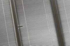 Κλιμένη άποψη σχετικά με την γκρίζα οριζόντια γρίλληα παραθύρου στο παράθυρο Στοκ Εικόνα