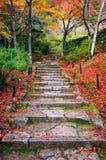 Κλιμακοστάσιο το φθινόπωρο, ναός Jojakkoji, Arashiyama, Κιότο, Ιαπωνία Στοκ εικόνες με δικαίωμα ελεύθερης χρήσης