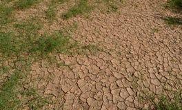 Κλιματική αλλαγή και ξηρασία στοκ εικόνα