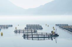 Κλουβιά για την καλλιέργεια ψαριών στοκ φωτογραφία