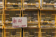 Κλουβιά πουλιών Στοκ Φωτογραφίες