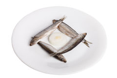 Κλυπέες στο πιάτο που απομονώνεται στο άσπρο υπόβαθρο Στοκ φωτογραφία με δικαίωμα ελεύθερης χρήσης