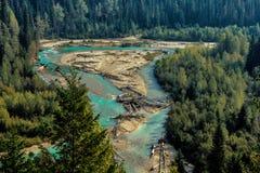 Λάκτισμα του ποταμού Canadian Rockies αλόγων Στοκ φωτογραφία με δικαίωμα ελεύθερης χρήσης