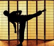 Λάκτισμα Kung fu Στοκ εικόνες με δικαίωμα ελεύθερης χρήσης