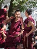 Λάμα στο ναό της Sela, Θιβέτ, Κίνα στοκ εικόνα
