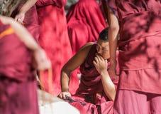 Λάμα στο ναό της Sela, Θιβέτ, Κίνα στοκ φωτογραφία