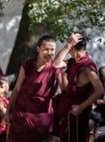 Λάμα στο ναό της Sela, Θιβέτ, Κίνα στοκ εικόνα με δικαίωμα ελεύθερης χρήσης