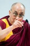 λάμα dalai Στοκ Φωτογραφία