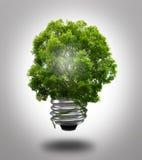 Λάμπα φωτός Eco Στοκ Φωτογραφία