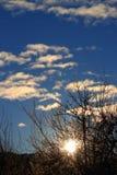 Λάμποντας ήλιος μέσω των κλάδων στα Πυρηναία, Γαλλία Στοκ φωτογραφία με δικαίωμα ελεύθερης χρήσης