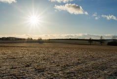 Λάμποντας ήλιος το χειμώνα σε παγωμένο medow, τα δέντρα και τα σύννεφα Στοκ Φωτογραφία