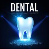 Λάμποντας δόντι Helthy με τα επίκεντρα Φρέσκο πρότυπο σχεδίου στοματολογίας Έννοια οδοντικής υγείας Στοματική φροντίδα Στοκ Εικόνες