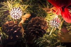 Λάμποντας κουδούνια με τα pinecones Στοκ εικόνα με δικαίωμα ελεύθερης χρήσης
