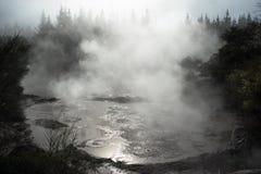 Λάσπη & ατμός Στοκ Εικόνα