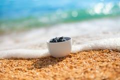 Λάσπη θάλασσας σε ένα κύπελλο Στοκ Εικόνες