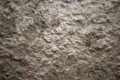 λάσπη Στοκ Εικόνες