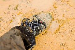 λάσπη Στοκ εικόνα με δικαίωμα ελεύθερης χρήσης