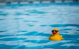 Λάστιχο duckie Στοκ φωτογραφίες με δικαίωμα ελεύθερης χρήσης
