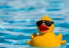 Λάστιχο duckie Στοκ Φωτογραφίες