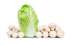 λάχανο αγαρικών Στοκ φωτογραφία με δικαίωμα ελεύθερης χρήσης