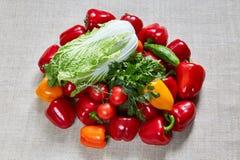 Λάχανο, αγγούρι, μάραθο, μαϊντανός, κίτρινη, πορτοκαλιά, κόκκινη πάπρικα στον καμβά Στοκ φωτογραφία με δικαίωμα ελεύθερης χρήσης