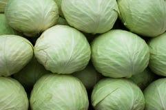 Λάχανο από τον τομέα Υπόβαθρο λάχανων Στοκ φωτογραφία με δικαίωμα ελεύθερης χρήσης